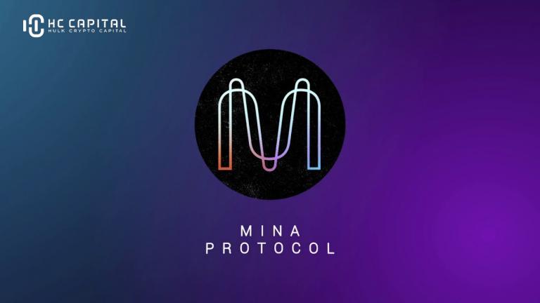 Mina Protocol là gì ? Toàn bộ thông tin về tiền điện tử Mina Protocol