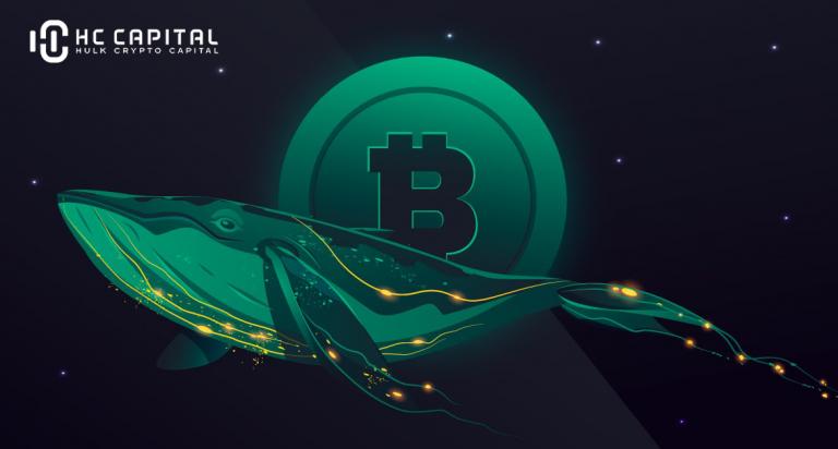 Bitcoin giảm xuống dưới mức hỗ trợ quan trọng 33 nghìn USD khi cá voi Bitfinex bán khống với hơn 5.000 BTC